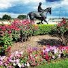 Image 4 of Lone Star Park, Grand Prairie