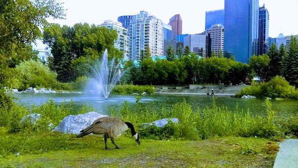 Popular tourist site Prince's Island Park in Calgary