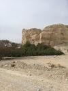 Image 8 of Neot HaKikar, Neot HaKikar