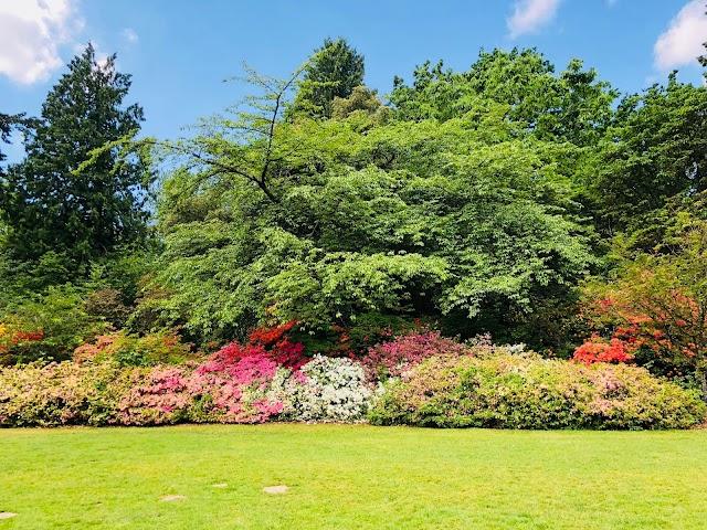 Washington Park Arboretum Botanic Gardens