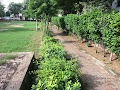 Veer Savarkar Park in gurugram - Gurgaon
