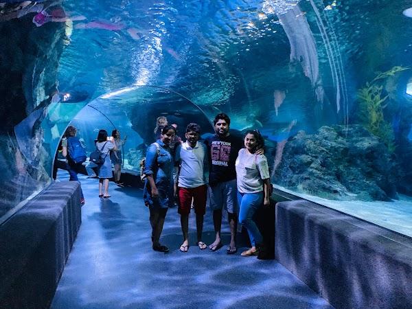 Popular tourist site SEA LIFE Bangkok Ocean World in Bangkok