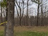 Image 3 of Munn's Creek Park, Oakville