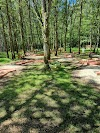 Image 3 de Familly Park, Neuvy-en-Sullias