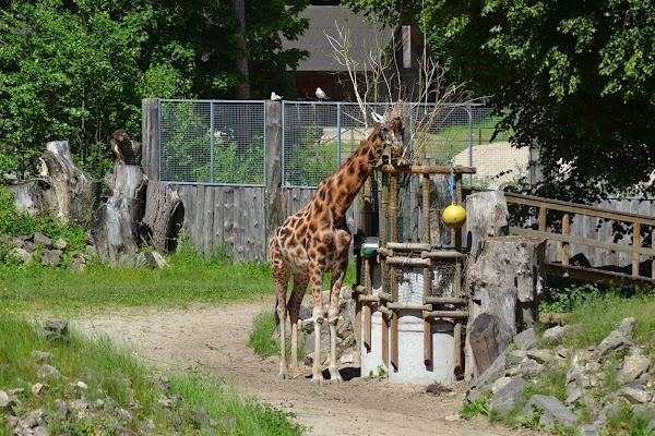 Popular tourist site Riga National Zoological Garden in Riga