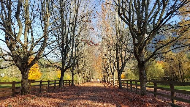 Rockwood Farm image