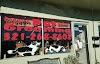 Image 4 of Doggone Pet Salon, Titusville