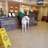 Image 5 of Hope Animal Clinic, Bessemer