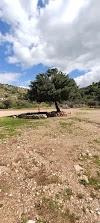 Image 2 of Nahal Dolev, [missing %{city} value]