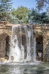 Image 3 of Dallas Arboretum and Botanical Garden, Dallas