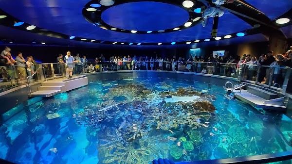 Popular tourist site New England Aquarium in Boston