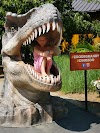 Image 8 of Zoo de Granby, Granby