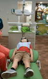 Image 5 of Coastal Pediatric Dentistry, Bluffton