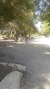 Image 1 of מחנה מישר, ביריה