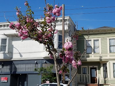 Noe Valley Parking - Find the Cheapest Street Parking and Parking Garage near Noe Valley | SpotAngels