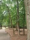 Image 8 of Wills Park, Alpharetta