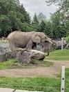 Image 5 of Zoo de Granby, Granby