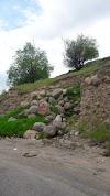 Use Waze to navigate to Meshgin Shahr Forest Park - پارک جنگلی مشگین شهر [missing %{city} value]