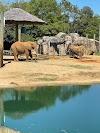 Image 5 of Montgomery Zoo, Montgomery