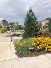 Image 8 of Midtown Home Plate Park, Denver