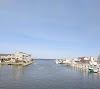 Image 8 of Rod N Reel Charter Fishing, Chesapeake Beach