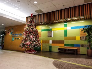 Florida Hospital Orlando Emergency Room