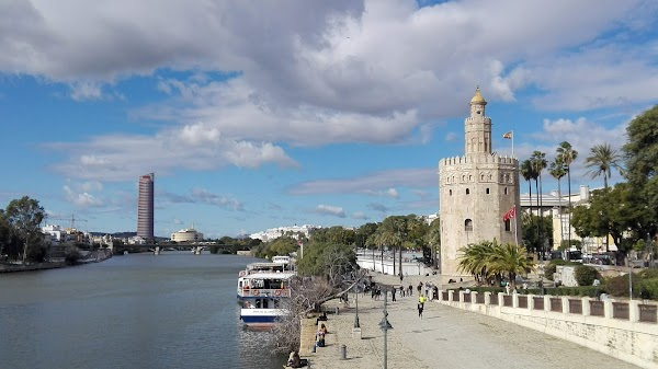 Popular tourist site Torre del Oro in Seville