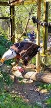 Image 1 of Zoo Atlanta, Atlanta
