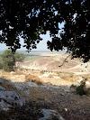 Image 6 of Kfar Uria, Kfar Uria