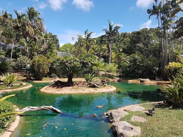Popular tourist site Honolulu Zoo in Honolulu