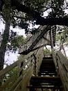 Image 5 of Etang de Cousseau Reserve Naturelle, Lacanau