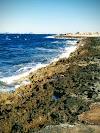 Image 1 of Martigues Nature Soleil, Martigues