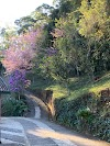 Image 7 of Pousada Villa Mantiqueira, [missing %{city} value]
