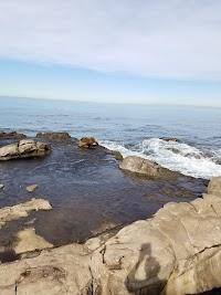 The Cove At La Jolla