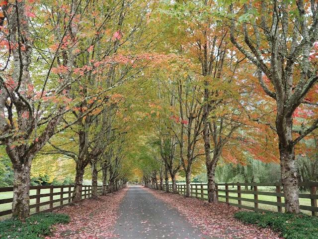 Rockwood Farm