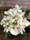 Image 6 of Orquidáceas Flores, [missing %{city} value]