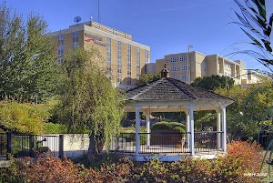 WellStar Cobb Hospital
