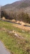 Image 6 of Brown Robertson Park, Roanoke