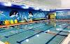 Image 7 of Goldfish Swim School, Wexford