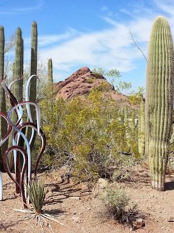 List item Desert Botanical Garden image