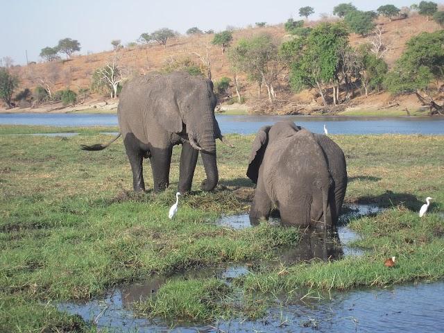 Botswana image