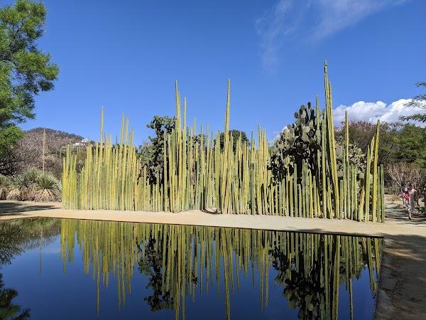 Popular tourist site Jardín Etnobotánico de Oaxaca in Oaxaca