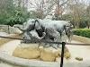 Image 7 of Dallas Zoo, Dallas