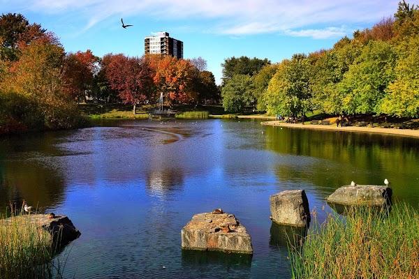 Popular tourist site La Fontaine Park in Montreal