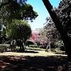Image 5 of Villa Bonelli, Barletta