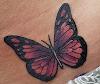 Image 7 of Inksomnia Tattoo Studios, Johns Creek