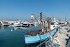 Image 8 of נמל יפו, Tel Aviv-Yafo