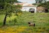 Image 5 of Naturarte - Turismo Rural Campo, Vila Nova de Milfontes