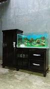 Image 8 of Dhika Aquarium, [missing %{city} value]