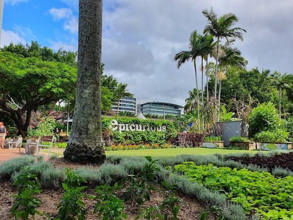Popular tourist site Epicurious Garden in Brisbane City